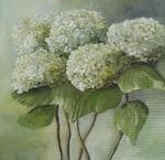 Grüne Hortensien, Öl auf Leinwand, 40x40 cm - Birgit Braun-Buchwaldt - AhRTISTS