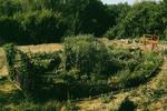 Eifel Arche - Paul Greven