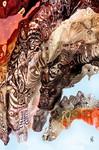 Neugierige Drachen - Bild mit Gitterstrukturen - Rainer Neuefeind